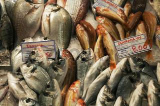 Doraden und Salmoneten im auf dem Fischmarkt