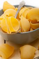 Italian snail lumaconi pasta