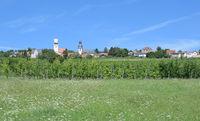 D--Rheinhessen--Weinort Zell im Zellertal 4 (2).jpg