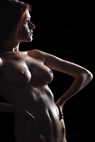 Sexy nude girl silhouette