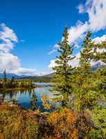 The lake Pyramid among high fir-trees