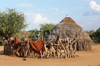 Traditionelles Haus der Hamer, Äthiopien, Afrika