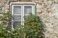 Window Idyll at old house