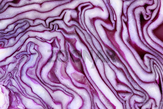 Blaukraut Rotkohl Kraut Kohl geschnitten Gemüse Hintergrund Textur