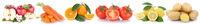 Obst und Gemüse Früchte Äpfel, Orangen Zitronen Karotten Tomaten Essen Freisteller in einer Reihe