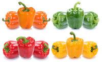 Paprika Paprikas bunt Gemüse Lebensmittel Sammlung Freisteller freigestellt isoliert