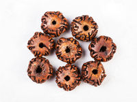 top view of beads from seeds of Rudraksha tree