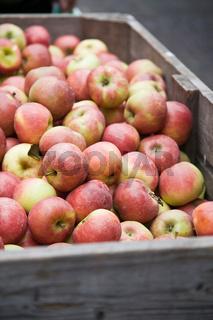 Äpfel auf dem Wochenmarkt