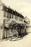 Bicycle in Strasbourg