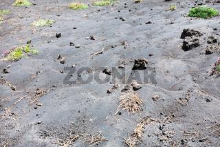black volcanic soil on slope of Etna mount