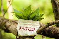 """Stinging Nettle in a jute bag with the word """"Ayurveda"""""""