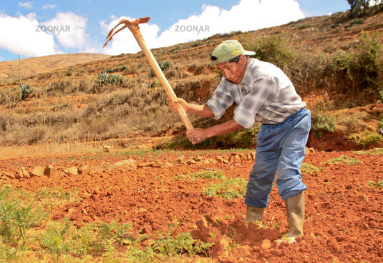Farmer in field work, South America