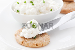 Cottage cheese on a cracker as closeup on white background