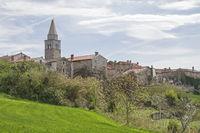 Kostanjica in Istria