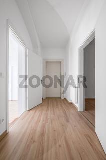 entrance door and corridor of new flat / apartment /shop