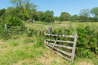 Agriculture landscape with fence