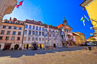 Ljubljana old town cobbled street and city hall view