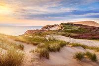 Dunes near Lonstrup