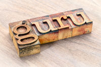 guru word abstract in wood type