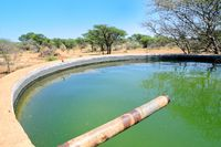 Water basin in the pastureland in Namibia