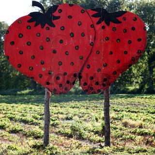 großes schild mit zwei roten erdbeeren