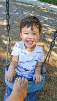 Adorable Chinese and Caucasian Young Boy Having Fun in the Swing