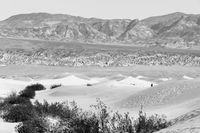 Lone Man Walks Sand Dunes Death Valley