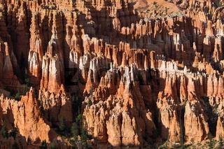 Bryce Canyon 91