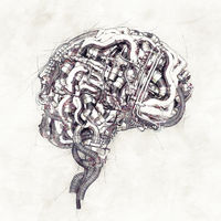 Sketch mechanical Brain