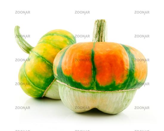 Ripe Gourds Vegetable Hybrid Isolated on White