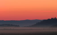 A fence and meadow at dawn