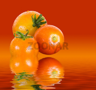 Macro image of three home grown tomatoes