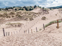 Sandy trail withing the moving dune Wydma Czolpinska in the the Slowinski National Park