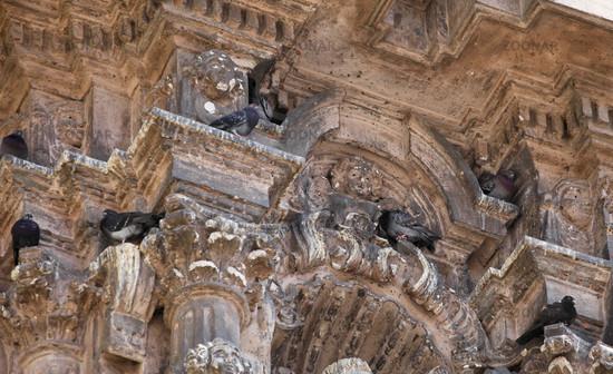 Doves On Church San Francisco in Lima