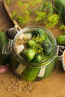 Closeup of fresh pickling cucumbers