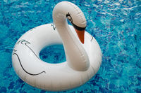 Inflatable white swan in the pool