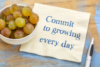 Commit to growing every day
