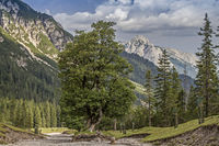 In Eppzirl valley