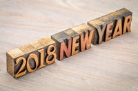 2018 New Year in vintage wood type