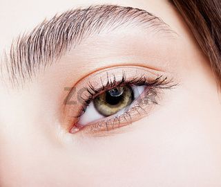 Female hazel eye makeup