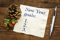 New Years goals list on napkin