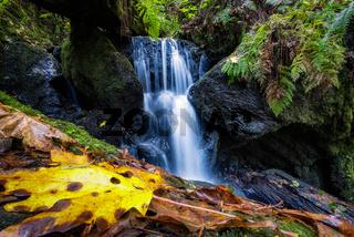 Trillium Falls, Orick, California