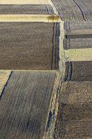 grainfields, crop fields, hedge, swabian alb, germany,