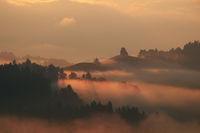 Golden morning Fog 3