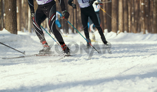 Ski competition - legs of sportsmen running on snowy sunny forest