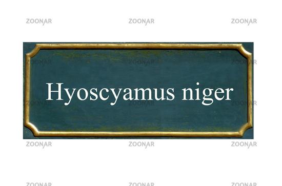 shield Hyoscyamus niger