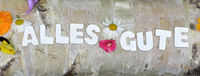 Alles Gute Text auf bunter Blumenwiese Buchstaben