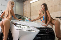 Sexy girls wash hood of expensive car