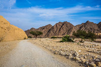 Hot winter in the desert near Red Sea
