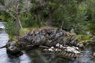 Bach und Ufervegetation im Romsdalen, Norwegen